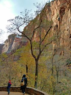 Family Fun Adventure: Zion National Park