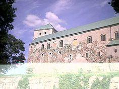 Castle of Turku Castle, Mansions, House Styles, Finland, Manor Houses, Villas, Castles, Mansion, Palaces