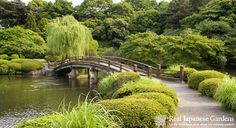 Famous Japanese Gardens | ... the most beautiful japanese gardens in tokyo it is a vast park and has