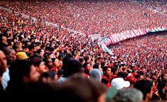 Com Maracanã cheio, Flamengo busca vitória sobre o Atlético-PR pela Libertadores Time Do Brasil, Jogging, Image, Wallpaper, Black, Walking, Wallpapers, Running