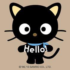 Choco Cat....I love you