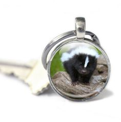 New to GlassCharmed on Etsy: Baby Skunk Animal Keyring Glass Keyring key chain photo keyring photo keychain Silver metal Key ring key fob picture keyring (10.99 GBP)