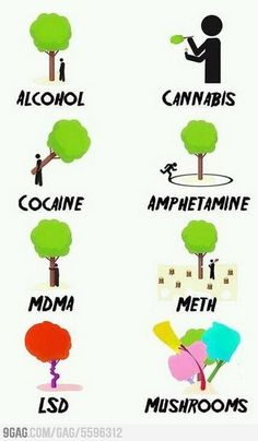 How to understand drugs...seems legit ;)