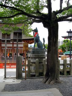 Fox statue at Fushimi-Inari Taisha. Fox statue at Fushimi-Inari Taisha. Fushimi Inari Shrine is the most famous of several thousands of shrines dedicated to Inari across Japan. Inari is the Shinto god of rice, and foxes are thought to be his messengers.