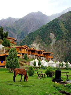 Huts and Tents at Raikot Sarai (Hotel) at Fairy Maedows. Fairy Meadows is the heart of exotic North Pakistan. It is located at the base of Nanga Parbat, which, at 8126 m, is the 9th highest mountain in the world. Pakistan Travel Zugriff auf die Website für Informationen https://storelatina.com/pakistan/travelling #americanexpresstravelpakistankarachi #receitas #travelpakistaninstagram #pakistantravelagencynames