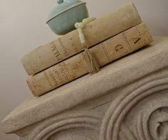 Details. Beautiful antique vellum books.
