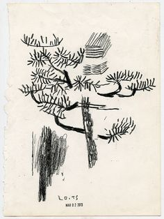 "tessar lo - fragment, (kagoshima) 7.5 x 10"", 19 x 25 cm, china marker on paper, 2013shop,"