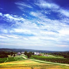 A beautiful photo taken in Missouri wine country (at Chaumette Vineyards & Winery) by Adam Hickey. #travel #destination