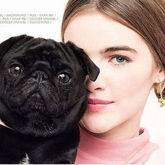✨🎊Happy Year of the Dog 🎊✨ Happy Chinese New Year! 🎊To celebrate the Year of the Dog and our new shops in China we launch our NEW Puppies Collection! 🐶Have you seen if your favourite breed is featured? Happy Chinese New Year, Happy Year, Pug Rescue, Dog Years, New Shop, Fashion Shoot, Pugs, French Bulldog, Indie
