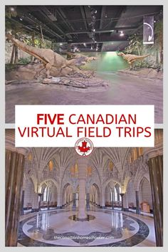 5 Canadian Virtual Field Trips for Fun & Learning - - Today, we're going to take a trip to 5 different Canadian virtual field trips that you and your children can join in from the comfort of your own home. Virtual Museum Tours, Virtual Tour, Virtual Games, Educational Activities, Learning Activities, Toddler Activities, Teaching Ideas, Quebec Montreal, Virtual Field Trips