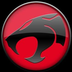All of the Thundercats...I even tatted this symbol on my shoulder. Bit reminds me to be powerful....