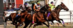 The Professional Indian Horse Racing Association (PIHRA) is moving to Rapid City! PIHRA and Black Hills Speedway have partnered to develop Indian Relay into a major event in Rapid City. #VisitRapidCity