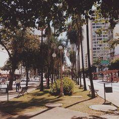 #vsco #vscocam #streetphotography #streetphoto_brasil #goianiawalk #gyn #eucurtogyn by ara.batur http://ift.tt/1X3SRyv