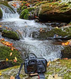 Title  Canon  Artist  Dan Sproul  Medium  Photograph - Photograph-digital