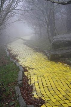 Eerie photo of the Yellow Brick Road from an abandoned Wizard of Oz theme park in North Carolina!