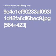 9e4c1ef90233af093f1d48fa6df6bec9.jpg (564×423)