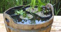So legen Sie einen Miniteich richtig an This mini pond brings atmosphere to the terrace and only needs one square meter of space. So that the aquatic plants feel well, the chosen vessel should be at least 40 centimeters deep Herb Garden Pallet, Pallets Garden, Small Natural Garden Ideas, Mini Pond, Indoor Water Garden, Garden Parasols, Cottage Garden Plants, Balcony Plants, Most Beautiful Gardens
