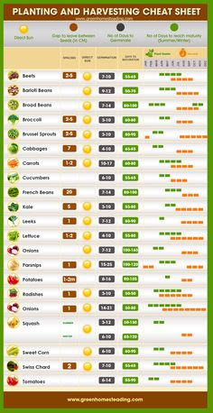 Planting and Gardening Cheat Sheet by greenhomesteading #Infographic #Gardening #Planting #Harvesting