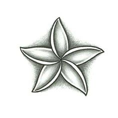 Jasmine Flower. Would be cute with the anchor design that I have in mind.