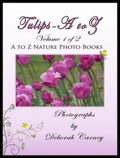 Tulips A to Z (A to Z Nature Photo Books Book 1) by Deborah Carney http://www.amazon.com/dp/B007SLD5C4/ref=cm_sw_r_pi_dp_8jjGwb07VP30M - A set of books that identify full color images of tulips. Due to the size of the completed books, we have broken Tulips A to Z into two books, varieties that start with A through L and M through Z.