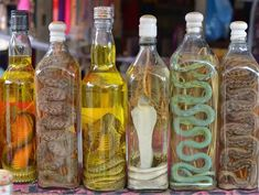 Facts about Snake Wine