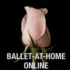 Instructional online ballet class videos make lear…
