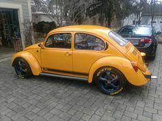 75 German Looker