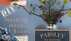 The other day, Handan showed me a picture of some nesting herb boxes for sale online somewhere. They were out of stock. A quick search revealed that they were o… Diy Wood Projects, Diy Projects To Try, Wood Crafts, Wood Craft Patterns, Pallets Garden, Boxes For Sale, Craft Tutorials, Cookies Et Biscuits, Woodworking Projects