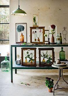 Greenhouse - Little Blue Deer Custom Blog Design and Website Design