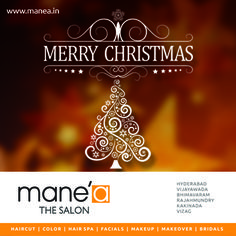 #manea team Wishing you and your family a very Happy #Christmas 2015