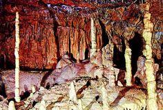 Cuevas de Altamira |Cantabria - España - Spain