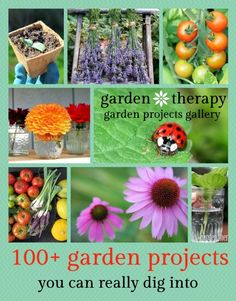 Garden Therapy Gardening- 100+ Gardening Projects and Tips That Will Get You Digging