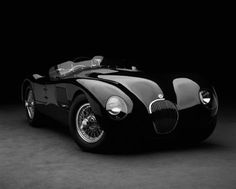 "Jaguar C-Type2 (1961) ""That's 4 wheels worth of eroticism! The P---- Chaser incarnate and defined!! Wheels that make you wet.!! THG"