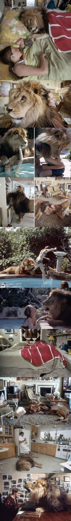 Gotta love it when your best friend is a lion