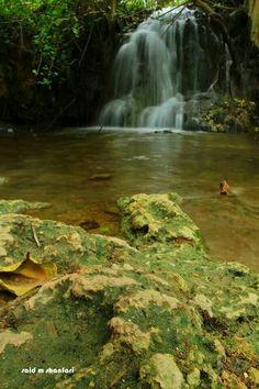 Beautiful Salalh - Oman Salalah, Pretty Pictures, Fashion Men, Coastal, Waterfall, Beautiful Places, Landscapes, Scenery, Around The Worlds