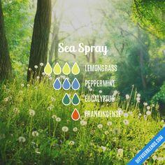 Sea Spray - Essential Oil Diffuser Blend