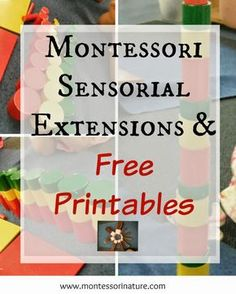 MONTESSORI SENSORIAL EXTENSIONS AND FREE PRINTABLES | Montessori Nature...
