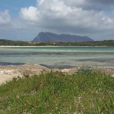 by http://ift.tt/1OJSkeg - Sardegna turismo by italylandscape.com #traveloffers #holiday | #brandinchi #santeodoro #sardegnareflex #sardegna #sardinia #spring #springbreak #lanuovasardegna #lauralaccabadora #volgosardegna #volgoitalia #sunnyday #summertime #summer #sun #sea #water #blu #lafortunadivivereinsardegna Foto presente anche su http://ift.tt/1tOf9XD | March 12 2016 at 10:52PM (ph ritaaurorafarina ) | #traveloffers #holiday | INSERISCI ANCHE TU offerte di turismo in Sardegna…