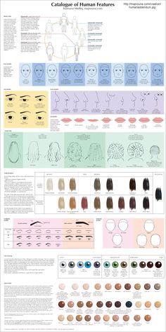 Catalog of Human Features http://majnouna.com/creation/humanaddendum.jpg