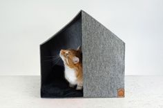 Cottage Cat House |
