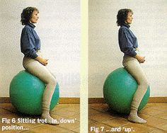 Physioballs article by Mary Wanless - swiss ball exercises for the rider.