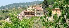 Google Image Result for http://www.weddinginvilla.com/villas-photo/910-370-CC-wedding-venue-italy-tuscany-lucca-tenuta-san-pietro-veues-10-locations.jpeg.jpeg