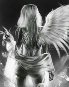 Anime Angel And Demon Sisters Ange Demon, Demon Art, Fantasy Art Women, Dark Fantasy Art, Foto Software, Statue Ange, Angel Artwork, Angel Drawing, Angel Warrior
