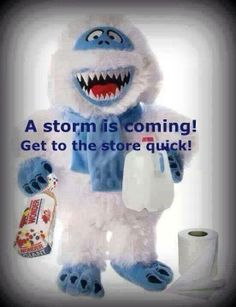 Yes! Another winter storm is headed this way.  2014 Orion