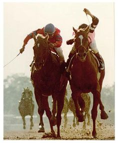 Affirmed (with blaze) vs Alydar, one of the greatest Horse rivalries of all time, was the last Triple Crown winner. Riding Affirmed, Steve Cauthen also became the youngest (age 18) jockey to ever win the U.S. Triple Crown and in 1994, was inducted into the National Museum of Racing and Hall of Fame.