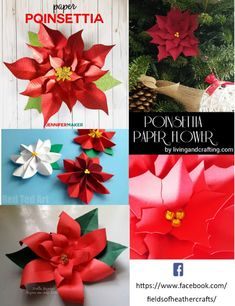 Fields Of Heather: Free Templates Tutorials For Making Paper Flowers With Cricut or Silhouette Rolled Paper Flowers, How To Make Paper Flowers, Large Paper Flowers, Tissue Paper Flowers, Paper Flower Backdrop, Giant Paper Flowers, Paper Garlands, Paper Decorations, Paper Dahlia