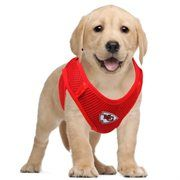 15 Best Kansas City Chiefs Pets & People AdoraBull images