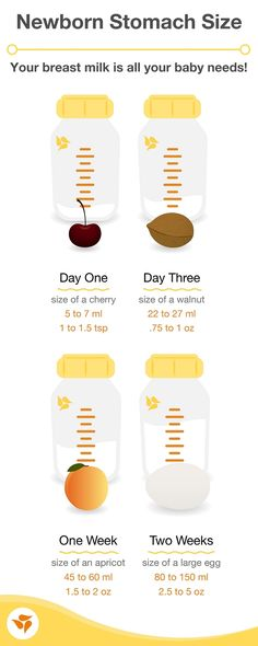 It's common for breastfeeding moms to doubt their supply, but your breast milk is all your baby's tiny belly needs! Start with this infographic, and click through to get the facts on infant stomach size. It's so important to learn how you can know for sure that baby is getting enough.
