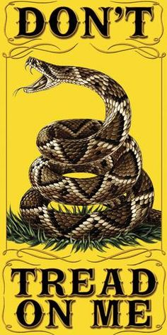 I like the dont tread on me flag because it showed that america was ready to fight and defend themselves no mater what. American Pride, American History, American Flag, American Freedom, American Independence, Dont Tread On Me, Gi Joe, Southern Pride, Simply Southern
