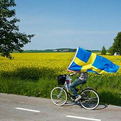 On the road between Dalby and Lund on the Swedish National Day 6 juni Let your Svenska flaggan fly! Kingdom Of Sweden, Scandinavian Countries, Swedish House, Gothenburg, Largest Countries, Swedish Design, Flags Of The World, Spain And Portugal, My Heritage